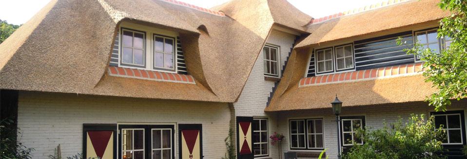 Nieuw rieten dak